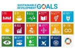 『政府の持続可能な開発目標(SDGs)に関する自発的国家レビュー』について